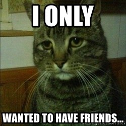 Depressed cat 2 - I ONLY WANTED TO HAVE FRIENDS...
