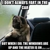 introspective pug - I don't always fart in the car but when I do, the Windows are up and the heater is on