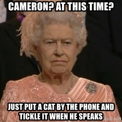 Queen Elizabeth Is Not Impressed  - Cameron? At this time? Just put a cat by the phone and tickle it when he speaks