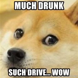 shibe doge - Much Drunk Such Drive... Wow