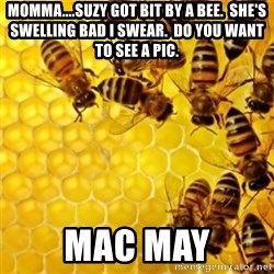 Honeybees - momma....Suzy got bit by a bee.  she's swelling bad I swear.  do you want to see a pic. Mac may