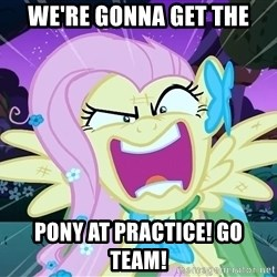 angry-fluttershy - We're gonna get the pony at practice! GO TEAM!