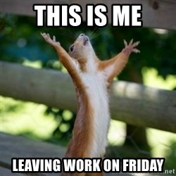 Praising Squirrel - THIS IS ME LEAVING WORK ON FRIDAY