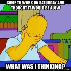 Homer Facepalm - came to work on Saturday and thought it would be alow what was i thinking?