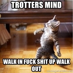 walking cat - Trotters mind Walk in fuck shit up walk out