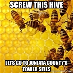 Honeybees - screw this hive lets go to juniata County's Tower sites