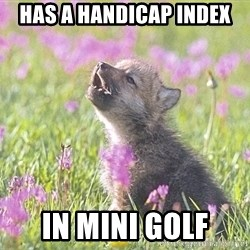Baby Insanity Wolf - has a handicap index in mini golf