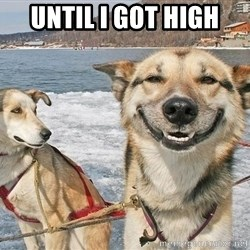 Stoner Dog - until i got high