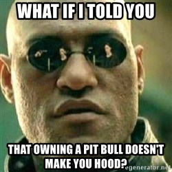 What If I Told You - WHAT IF I TOLD YOU THAT OWNING A PIT BULL DOESN'T MAKE YOU HOOD?