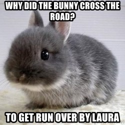 ADHD Bunny - WHY DID THE BUNNY CROSS THE ROAD? TO GET RUN OVER BY LAURA