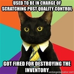 Business Cat - used to be in charge of scratching post quality control got fired for destroying the inventory