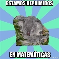 Clinically Depressed Koala - estamos deprimidos  en matemáticas