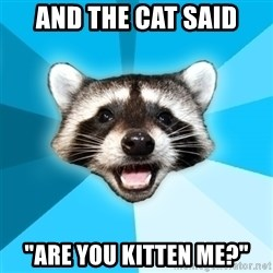 "Lame Pun Coon - and the cat said ""are you kitten me?"""