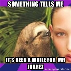 Perverted Whispering Sloth  - something tells me It's been a while for  Mr juarez