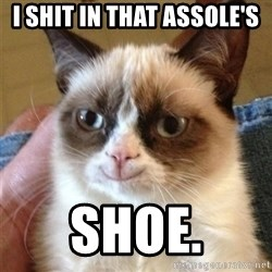 Grumpy Cat Smile - I SHIT IN THAT ASSOLE'S SHOE.