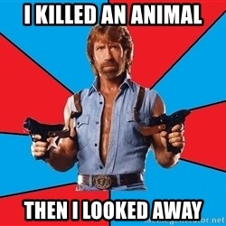 Chuck Norris  - I killed an animal then I looked away