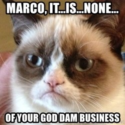 Angry Cat Meme - Marco, it...is...none... OF YOUR GOD DAM BUSINESS