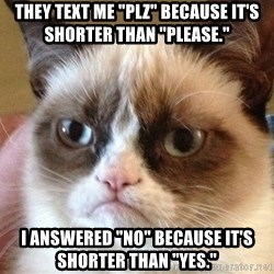 """Angry Cat Meme - They text me """"plz"""" because it's shorter than """"please."""" I answered """"no"""" because it's shorter than """"yes."""""""