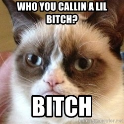Angry Cat Meme - Who you callin a lil bitch?  BITCH