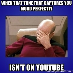 Picard facepalm  - When that tune that captures you mood perfectly Isn't on youtube