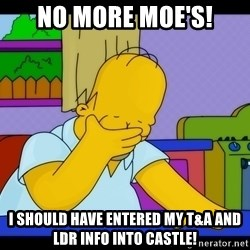 Homer Facepalm - No more moe's! I should have entered MY T&A and LDR info into Castle!