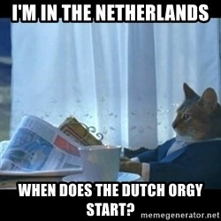 Thinking Cat - I'm in the Netherlands When does the Dutch orgy start?