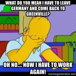 Homer Facepalm - what do you mean i have to leave germany and come back to greenville? oh no.... now i have to work again!