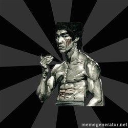 Bruce Lee Figther -