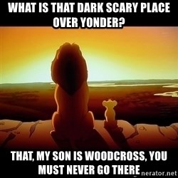 Simba - What is that dark scary place over yonder? That, My son is woodcross, you must never go there