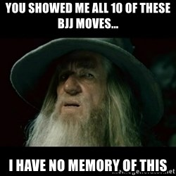 no memory gandalf - You showed me all 10 of these Bjj moves... I have no memory of this