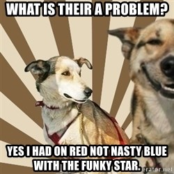 Stoner dogs concerned friend - What is their a problem?  Yes I had on Red not nasty blue with the funky star.