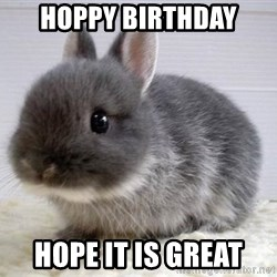 ADHD Bunny - HOPPY BIRTHDAY HOPE IT IS GREAT