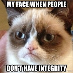 Angry Cat Meme - My face when people Don't have integrity