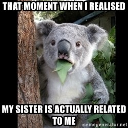 Koala can't believe it - that moment when i realised my sister is actually related to me