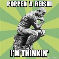 Overly-Literal Thinker - popped  a  reishi i'm thinkin'