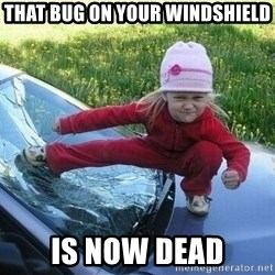 Angry Karate Girl - that bug on your windshield Is now dead
