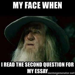 no memory gandalf - My face when I read the second question for my essay