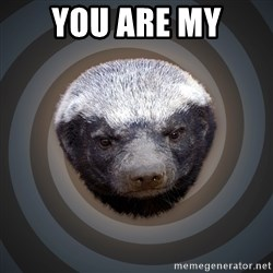 Fearless Honeybadger - You are my