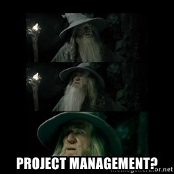 Confused Gandalf -  Project management?