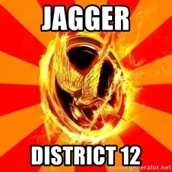 Typical fan of the hunger games - Jagger District 12