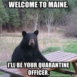 Patient Bear - Welcome to maine. i'll be your quarantine officer.