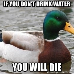 Actual Advice Mallard 1 - If you don't drink water You will die