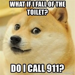 Real Doge - what if i fall of the toilet? do i call 911?
