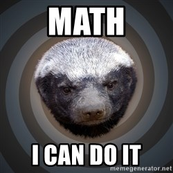 Fearless Honeybadger - Math I can do it