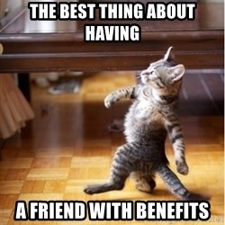 walking cat - the best thing about having a friend with benefits