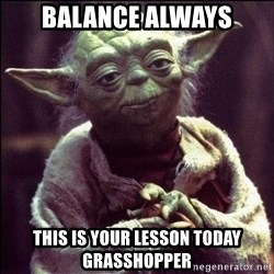 Advice Yoda - balance always this is your lesson today grasshopper