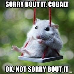 Sorry I'm not Sorry - Sorry Bout it, Cobalt Ok. Not sorry Bout It