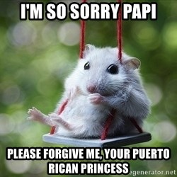 Sorry I'm not Sorry - I'm so sorry Papi Please forgive me, your Puerto Rican princess