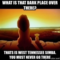 Simba - What is that dark place over there? Thats is West Tennessee Simba. You must never go there