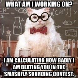 Science Cat - What am I working on?  I am calculating how badly I am beating you in the Smashfly Sourcing Contest.